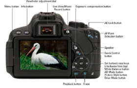 Checking for Key Digital Camera Features